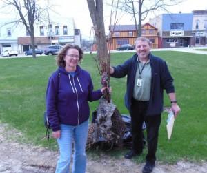 Rock River Trail Oak Trees