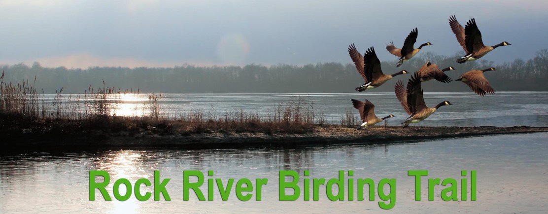 rock river birding trail